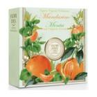 Фьери дея мыло кусковое мандарин и мята 100г  (картон)